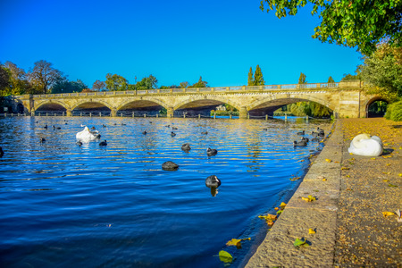 Beautiful landscape view of Serpentine Lake and Serpentine Bridge in Hyde Park, London, United Kingdom