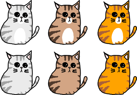 cute tabby cat varies color sitting character isolated white background . Ilustração