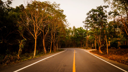 Winding road through a low mountain forest. Summer time. Road trip concept idea