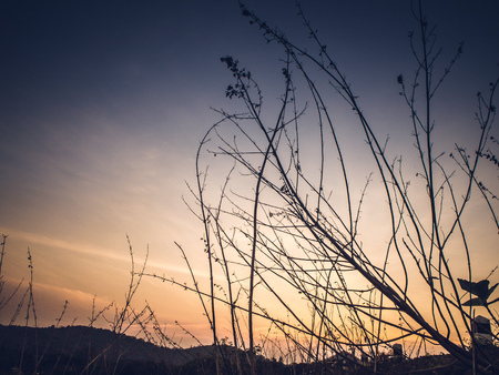 Atmospheric landscape with silhouettes of mountains, hills, forest at sunset Reklamní fotografie