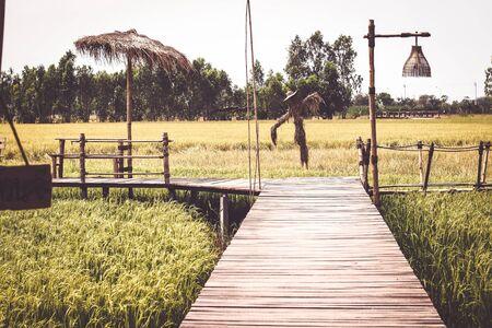 Wooden bridge in the rice field in summer Thailand background Stock Photo