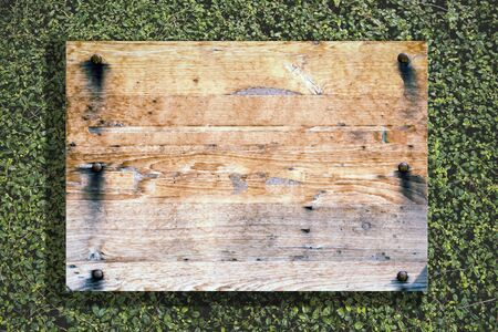 Wood old planks sign. Wooden sign on nature tree background
