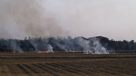 Slash-and-burn agriculture. Fire-fallow cultivation. Fire-fallow cultivation. AIR QUALITY POLICY .clean air problem. Air pollution PM2.5.Open agricultural burning | Climate & Clean Air Coalition Stock Photo - 140280257