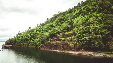The trees. Mountain on the island and rocks. Jungles, trees, river. Mangrove landscape. Thailand 스톡 콘텐츠