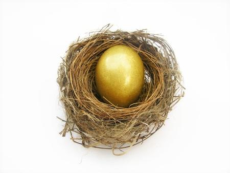 golden egg in nest           Stock Photo