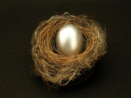 silver egg in nest             photo