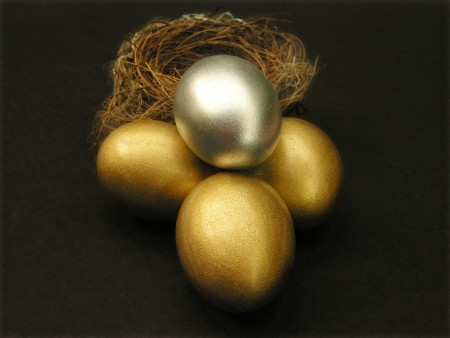 golden and silver egg in nest             photo