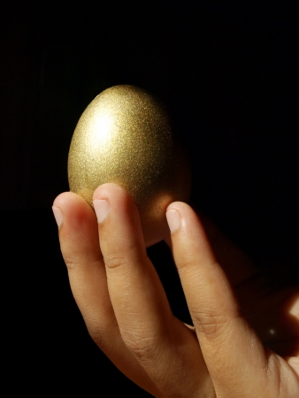 hand holding the golden egg     Stock Photo
