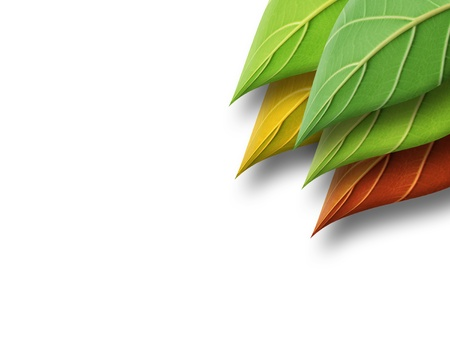 abstract leaves Stock Photo - 15852082