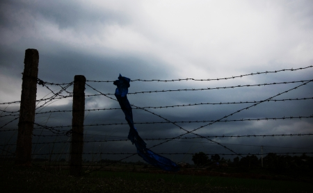 bearded wires: wire fence border