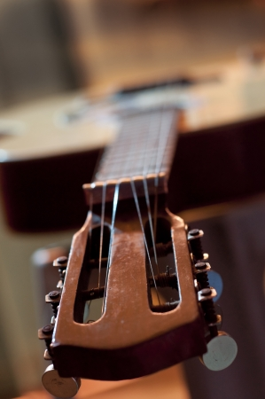 potrait of a guitar photo
