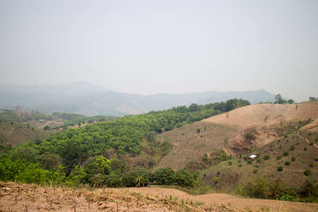 deforestacion: Deforestation on the mountain for agricultural in Payao province