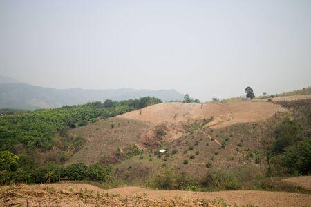 deforestacion: La deforestación en la montaña de la agricultura en la provincia de Payao