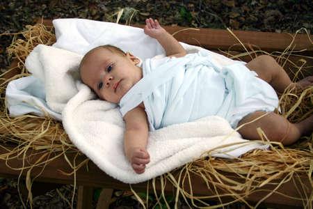 pesebre: Baby en pesebre