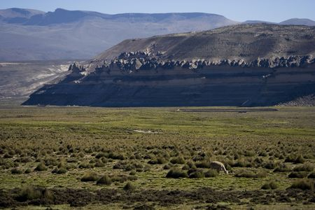 aguada: This is peruvian altiplano not far from National Park Salinas i Aguada Blanca Stock Photo
