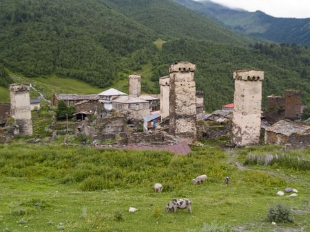 swanetia: Beauty old tower, few pigs, small village - Georgia, Swanetia in Caucasus Stock Photo