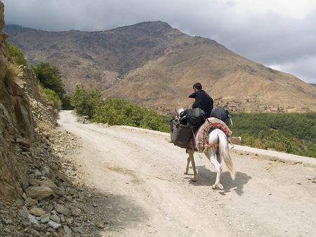 burden: Man on the mule, transportation backpack. Atlas mountain, Morocco Stock Photo