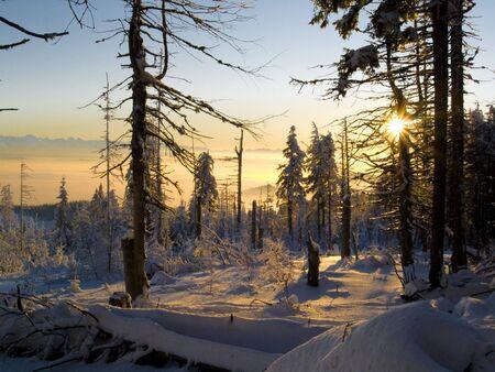 Winter sunset in polish mountains. Orange sky and white snow Stock Photo - 4913873