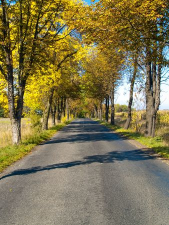 Country road in Poland  Autumn colorful day Stock Photo - 17301579