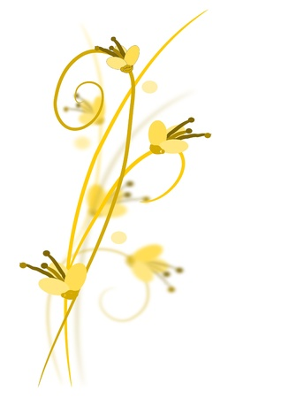 Three yellow flowers with shadows  Illustration