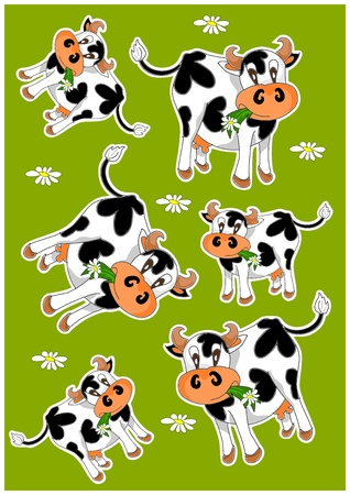 domestic cattle: Crazy cows - green background with animals Illustration