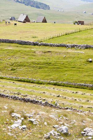 Rural view on Durmitor National Park, Montenegro, Balkans Stock Photo - 11581984