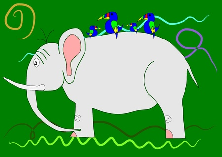 Elephant on the green background with colorful parrot Vector