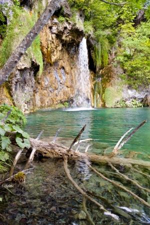Wodospad w Jeziora Plitwickie, Park Narodowy - Chorwacja, Europa Zdjęcie Seryjne - 15309326