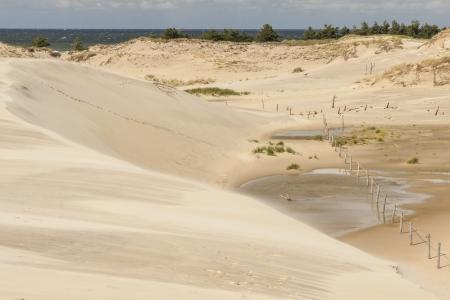 cloud drift: Leba dunes - beauty Polish National Park. In background Baltic sea.