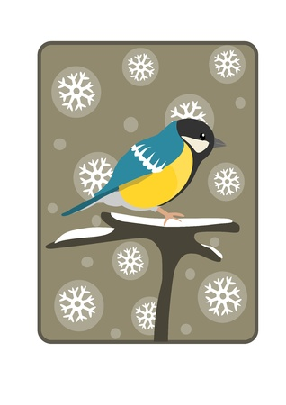 Tit on the branch - winter time.  Stock Vector - 16391499