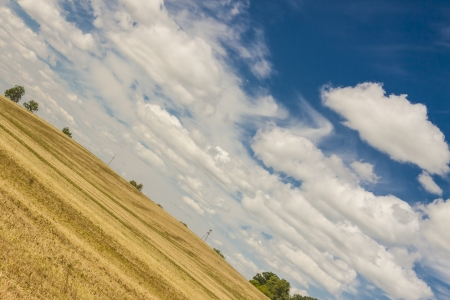Polish rural view on sunny summer day with blue sky and white clouds. Stock Photo - 17997867