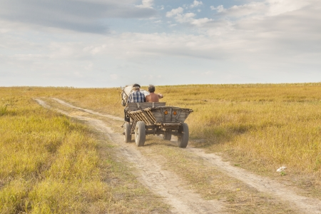 Rural view, old wooden cart - Ukraine harvest time. Sunny summer day. Stock Photo - 17997856