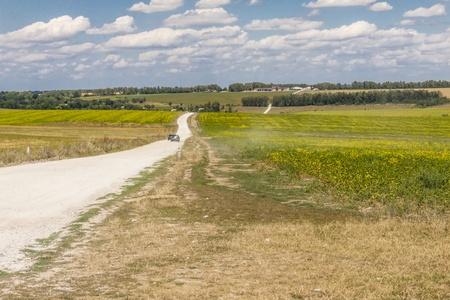 Gravel country route - Ukraine, Europe  Sunny summer day Stock Photo - 18373921