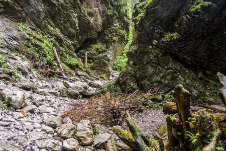 cracow: Ravine Cracow - Tatra National Park, Poland  Stock Photo
