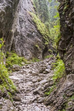Ravine Cracow - Tatra National Park, Poland Stock Photo - 21964654