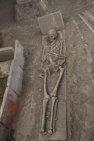 kostolac: Skeleton in archaeological site of Viminacium Roman city near Kostolac - Serbia  Stock Photo