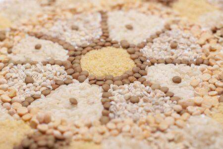 food Mandala wheel  photo
