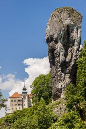 rhodium: Rock called Maczuga Herkulesa in National Ojcow Park, Poland