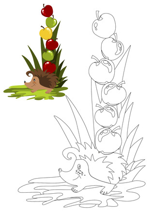 Coloring book with hedgehog vector illustration. Vector