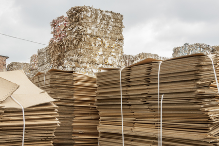 waste paper: Detail of waste paper recycling. Stock Photo