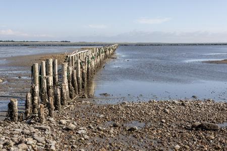 wadden: Wadden Sea National Park, near Mando island, Jutland, North Sea, Denmark, Europe