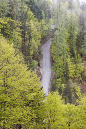 Aerial view on single country forest route - Austria, Werfen