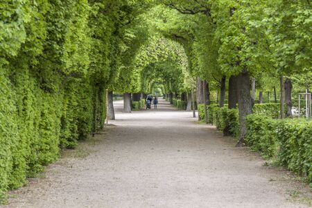 VIENNA, AUSTRIA - APRIL 23, 2019:Tourist in park alley next to  Schonbrunn Palace, imperial summer residence in Vienna  on April 23,2019 in Vienna,  Austria.