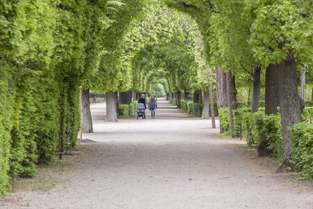 VIENNA, AUSTRIA - APRIL 23, 2019:Tourist in park alley next to  Schonbrunn Palace, imperial summer residence in Vienna  on April 23,2019 in Vienna,  Austria.Schonbrunn Palace is a UNESCO World Heritage site. Redakční