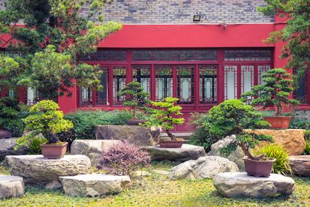 tuin met verschillende Bonsai-boom in Azië in dag (China) Stockfoto