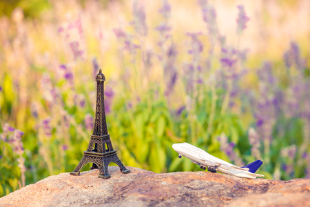 travel to Paris concept with plane , lavander and eiffel tower . french culture