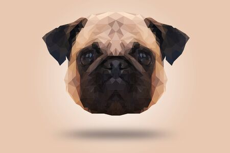 Symmetrical illustration of Pug. Made in low poly triangular style . abstract dog portrait . Imagens