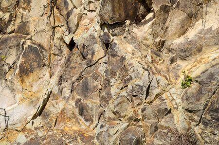 obrero: Mineral resumen de antecedentes