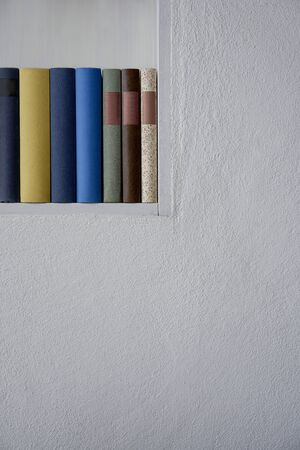 Detail of books in a bookshelf in a white plastered wall, upright format