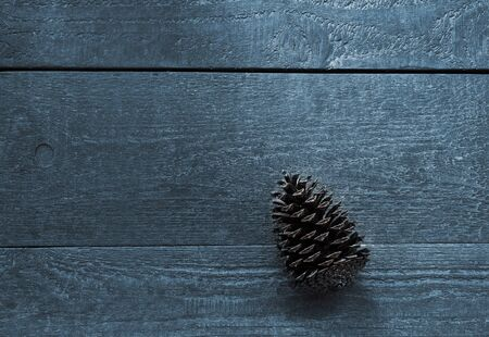 Wooden textured planks with a fir cone, backdrop and copy space Stok Fotoğraf